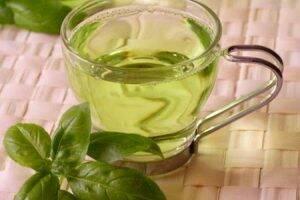 ceai-de-busuioc-frunze
