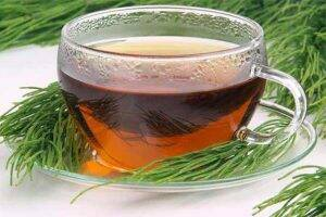 ceai-de-coada-calului-frunze
