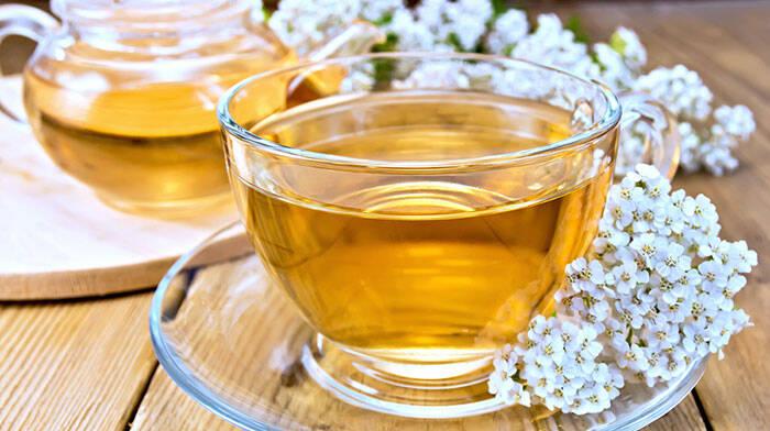 ceai-de-coada-soricelului
