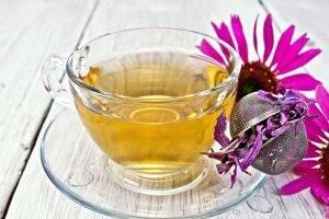 ceai de echinaceea flori