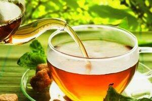 ceai-de-ghimpe-frunze