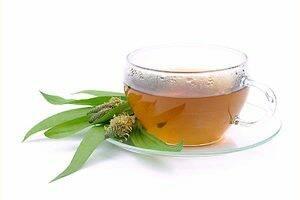 ceai-de-patlagina-frunze