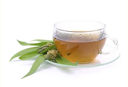 ceai-de-patlagina