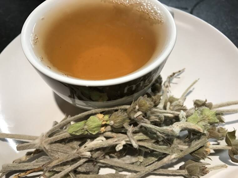 ceai-de-sideritis-cana