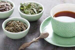 ceai-de-tataneasa-radacina