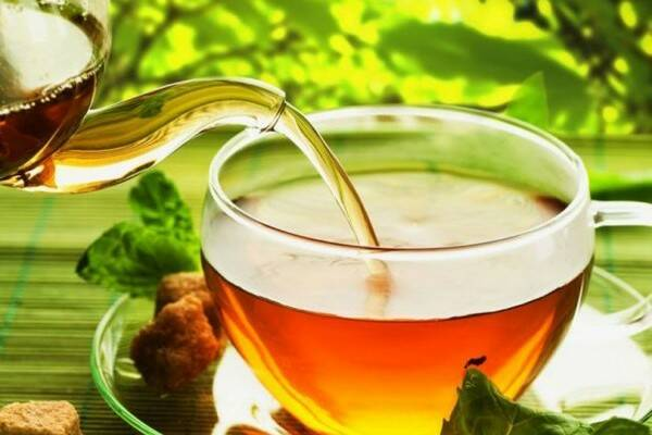 ceai-ghimpe-planta