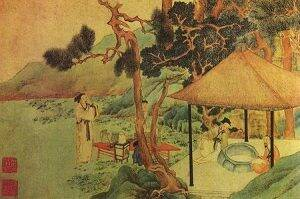 ceaiuri-naturale-istorie-poza-5