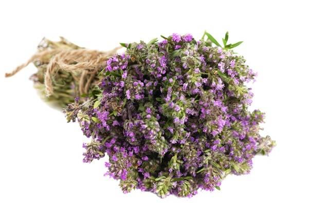 cimbrisor-flori-buchet