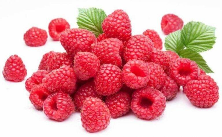 fructe-de-zmeur