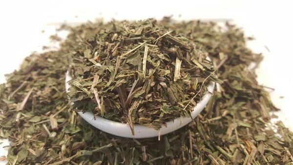 frunze-patlagina-uscate