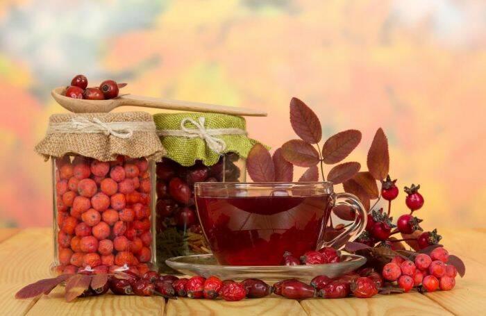 macese-flori-ceai-fructe
