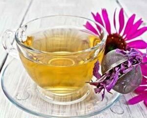 poza-ceai-de-echinaceea