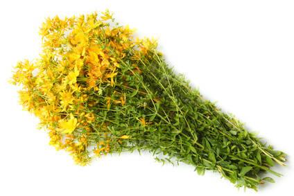 uscare-sunatoare-flori